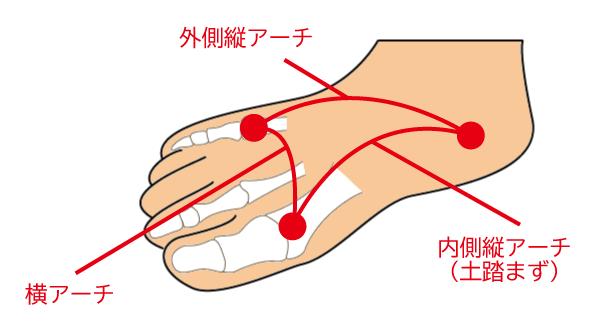 足の3つのアーチ